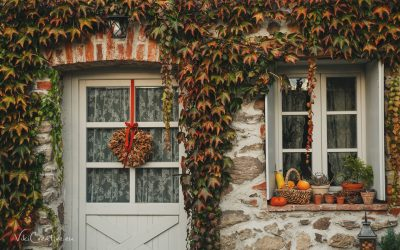 Premeny domova 23 – jesenná záhrada