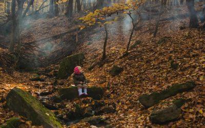 Jesenná prechádzka 8.11.2020
